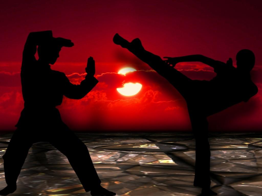 martial-arts-291049_1280