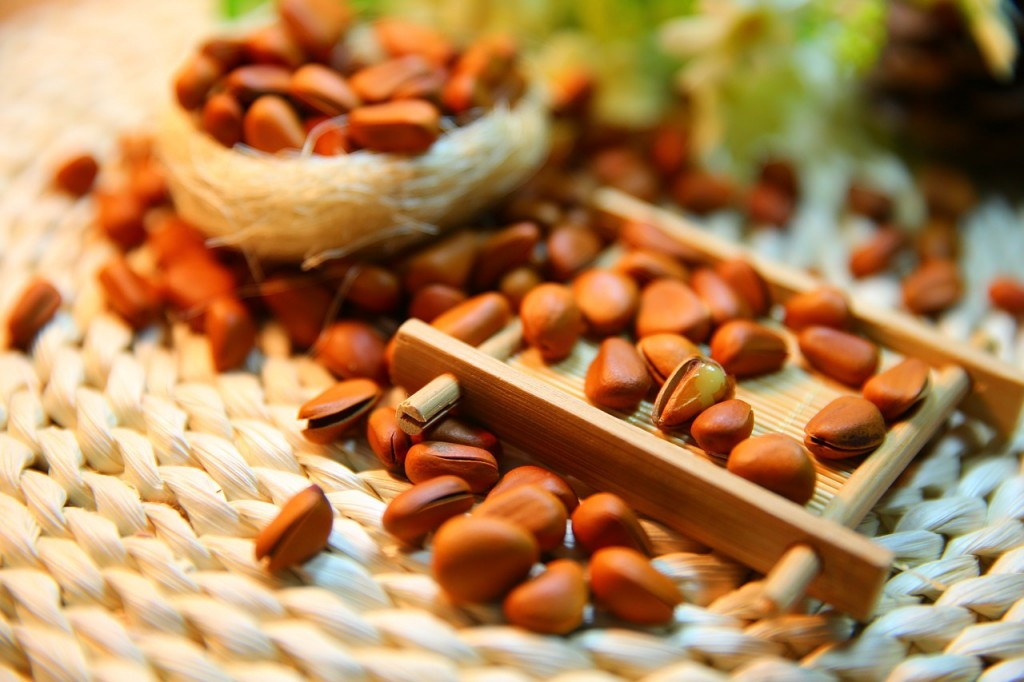 pine-nuts-1098175_1280