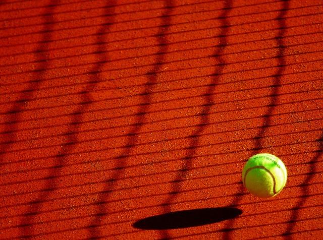コーラテニス