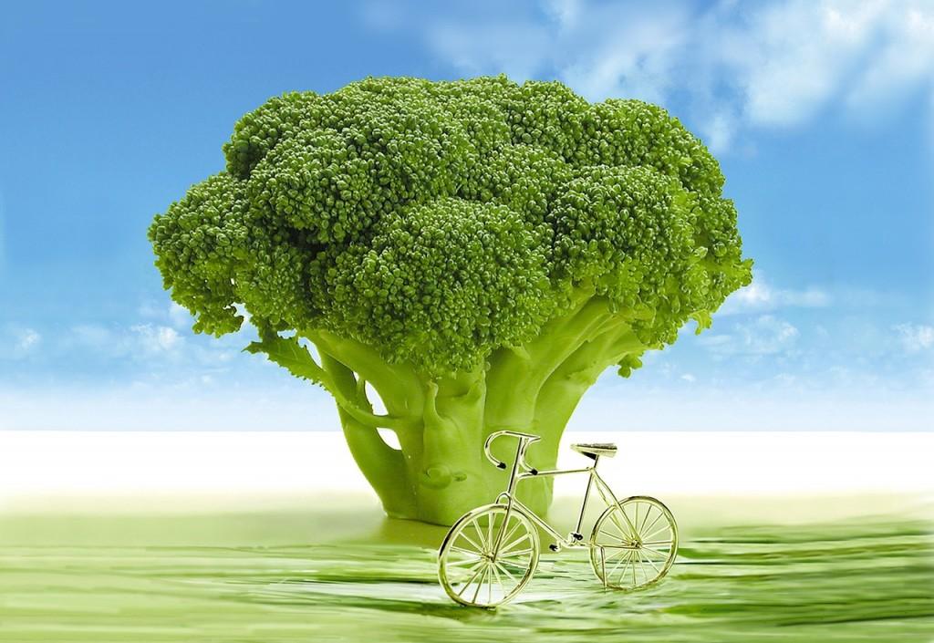 ブロッコリーがダイエット筋トレに最強の野菜