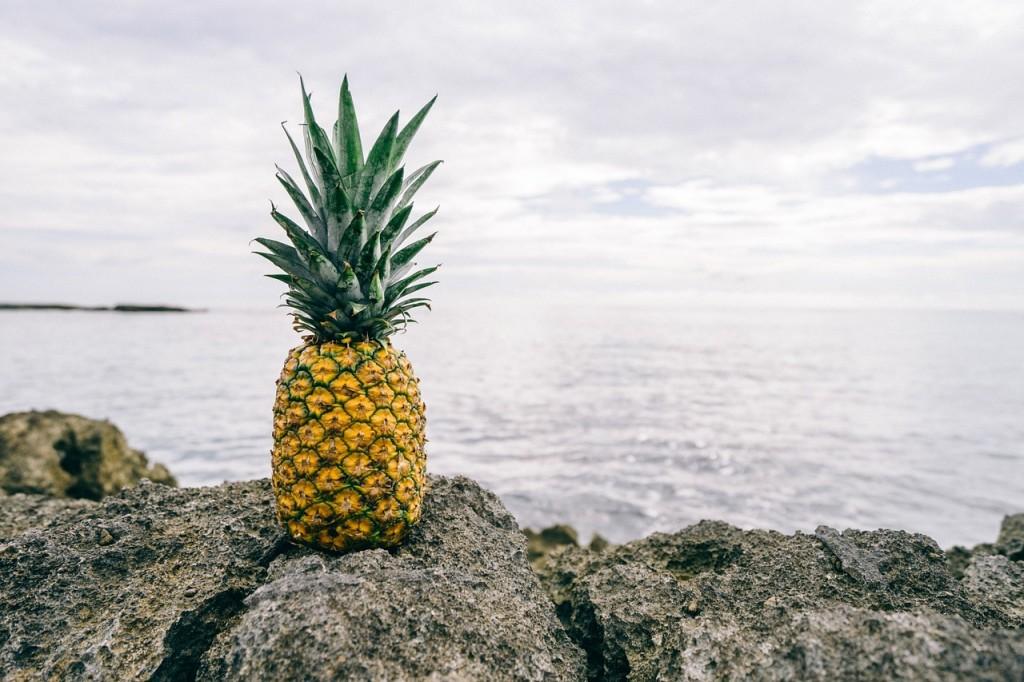 pineapple-1149047_1280
