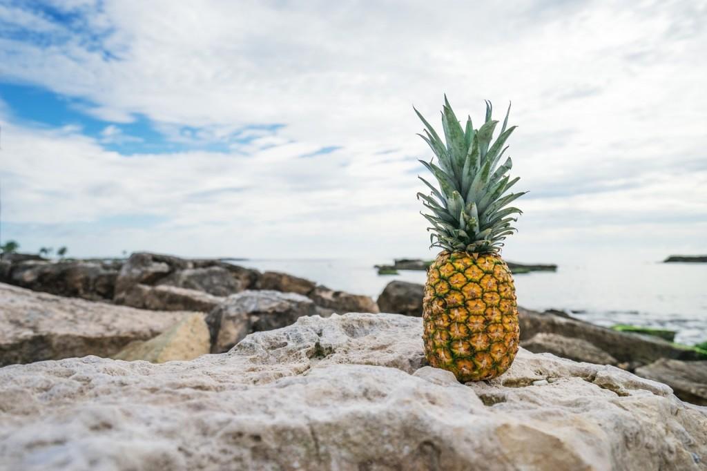 pineapple-1208306_1280