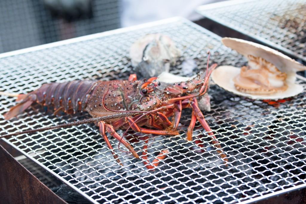 魚介類タンパク質含有量ランキング